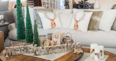 Lockside Trading Company couch and table with christmas decorations