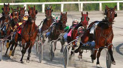 Kawartha Downs Horse Racing Schedule