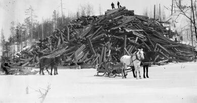 Lumbering Woodpile & Sleigh