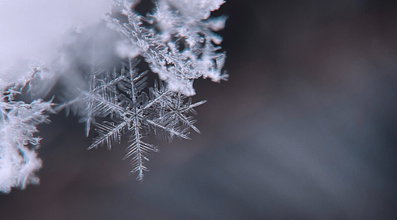 close up of snowflake