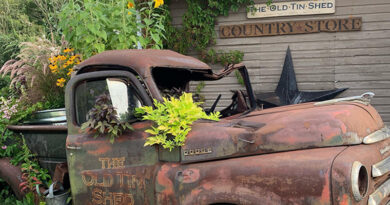 Welcome Back – Old Tin Shed